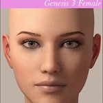 Real Eyebrows for Genesis 3 Female
