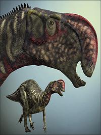 AltirhinusDR by Dinoraul