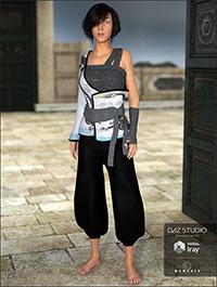 Eastern Wanderer for Genesis 3 Females by Cichy