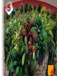 Yughues Bushes & Weeds v.2