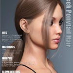 Sleek Ponytail Hair for Genesis 3 and 8 Females by outoftouch