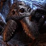 Giant Monster Spider HD